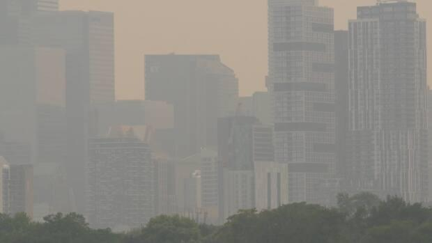 Buildings in downtown Toronto appear grey against the skyline because forest fire smoke from northwestern Ontario has settled over the city. (CBC - image credit)