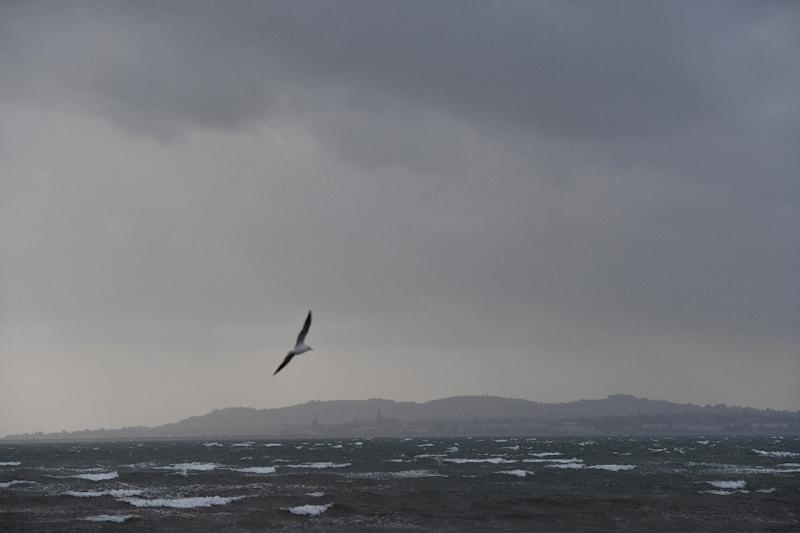 Dark clouds gathered over the Irish Sea and Dublin as Ireland braced for the passing of the storm Ophelia that left three dead and hundreds of thousands of homes without power (AFP Photo/Ben STANSALL)