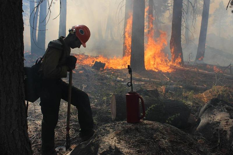In this photo provided by the U.S. Forest Service, a Hotshot fire crew member rests near a controlled burn operation at Horseshoe Meadows, as crews continue to fight the Rim Fire near Yosemite National Park in California Wednesday, Sept. 4, 2013. The massive wildfire is now 80 percent contained according to a state fire spokesman. The Rim Fire's southeast flank in Yosemite National Park is expected to remain active where unburned fuels remain between containment lines and the fire. (AP Photo/U.S. Forest Service, Mike McMillan)