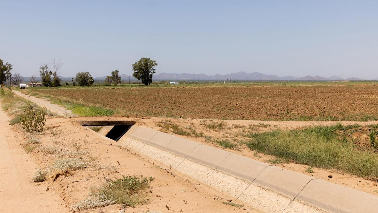 A irrigation canal dried out due to water shortages at farm in Casa Grande, Ariz., in August.