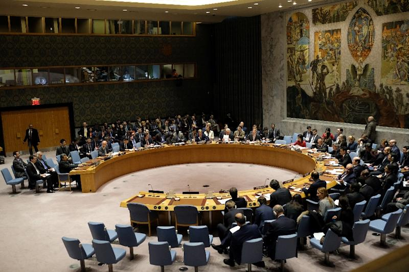 Russia is expected to use its veto power at the Security Council to block action against its ally Syria (AFP Photo/Jewel SAMAD)