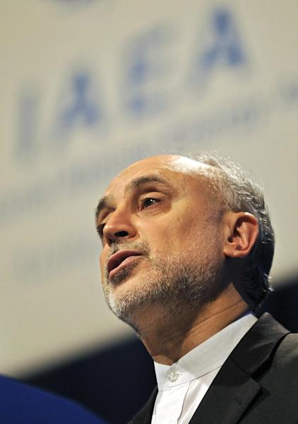 Head of Atomic Energy Organization of Iran Ali Akbar Salehi delivers a speech during the general conference of the International Atomic Energy Agency, IAEA, at the International Center in Vienna, Austria, Monday, Sept. 16, 2013. (AP Photo/Hans Punz)