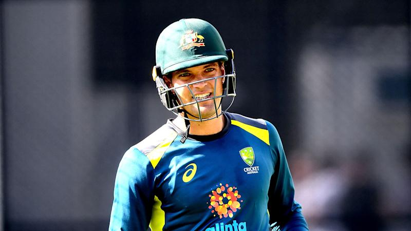 Alex Carey has been touted as a possible future Test captain of Australia.