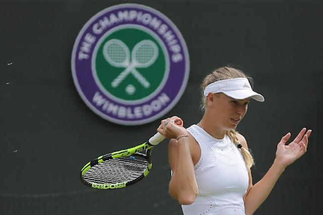 Denmark's Caroline Wozniacki was surrounded by flying ants during her Wimbledon defeat (AFP Photo/Daniel LEAL-OLIVAS)