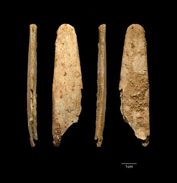 Neanderthals may have crafted what are the oldest examples of a kind of bone tool called a lissoir, which was used to smooth out hides to make them tougher. Here, the most complete lissoir found during excavations at the Neanderthal site of Abr