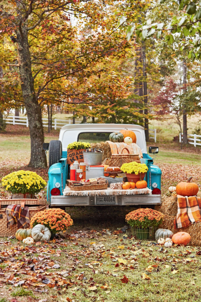 "<p>If the temperatures are manageable where you live, why not take your Thanksgiving feast outside? Serve al fresco <a href=""https://www.countryliving.com/food-drinks/g643/delectable-holiday-appetizers-1208/"">appetizers</a> from the back of a pickup truck for a fall-inspired finger food buffet. Freshly picked pumpkins, bold blooms, and plaid throws complete the look. </p><p><a class=""body-btn-link"" href=""https://www.amazon.com/Fennco-Styles-Classic-Design-Blanket/dp/B00P8N8NDU?tag=syn-yahoo-20&ascsubtag=%5Bartid%7C10050.g.1371%5Bsrc%7Cyahoo-us"" target=""_blank"">SHOP PLAID THROWS</a></p>"