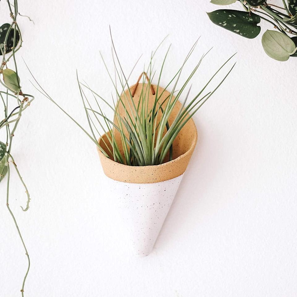 <p>If your guardian is also plant parent, they'll love this <span>Carter and Rose Ceramic Wall Planter Large with Air Plant</span> ($38). It will add a dash of nature to any interior.</p>