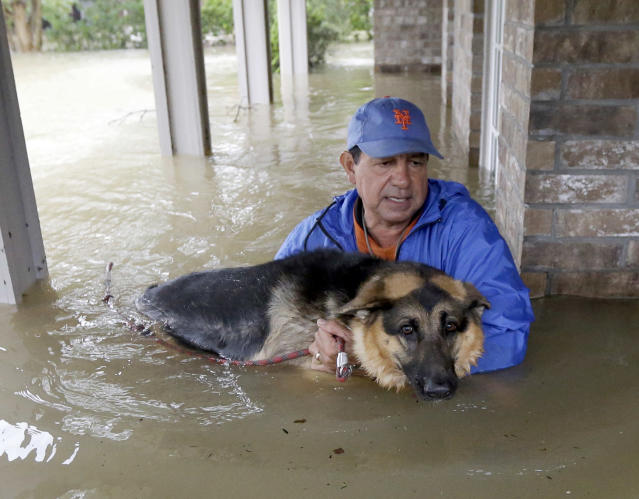 <p>Joe Garcia carries his dog Heidi from his flooded home as he is rescued from rising floodwaters from Tropical Storm Harvey on Aug. 28, 2017, in Spring, Texas. (Photo: David J. Phillip/AP) </p>