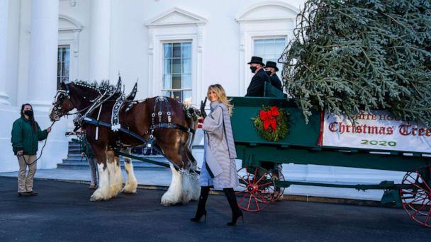 PHOTO: First Lady Melania Trump presents the 2020 White House Christmas tree on the North Portico of the White House in Washington, DC., Nov. 23, 2020. (Jim Lo Scalzo/EPA via Shutterstock)