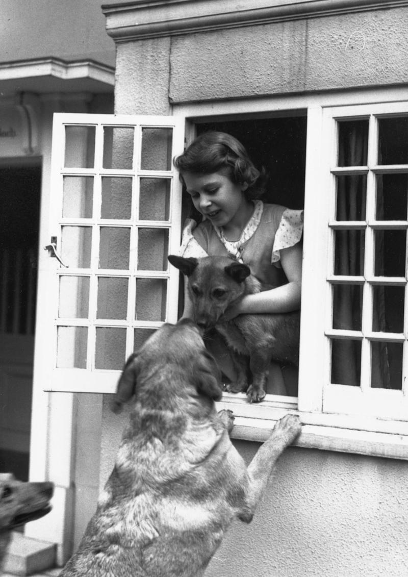 Queen Elizabeth II with her dogs at a window of Y Bwthyn Bach, aka the Welsh House, a miniature house presented to her and Princess Margaret by the people of Wales, built in the grounds of the Royal Lodge, Windsor, 1936.