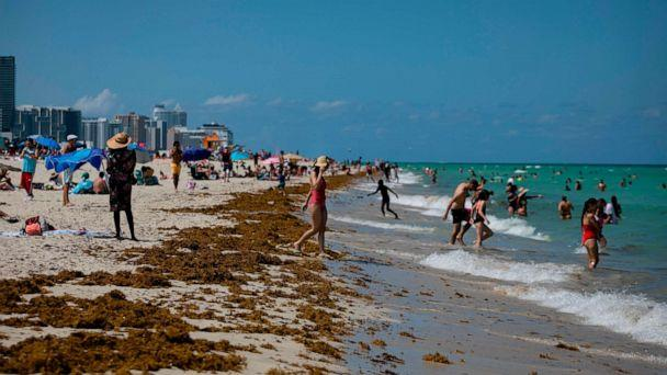 PHOTO: People gather on the beach in Miami Beach, Florida on June 16, 2020. - Florida is reporting record daily totals of new coronavirus cases, but you'd never know it looking at the Sunshine State's increasingly busy beaches and hotels. (Eva Marie Uzcategui/AFP via Getty Images)