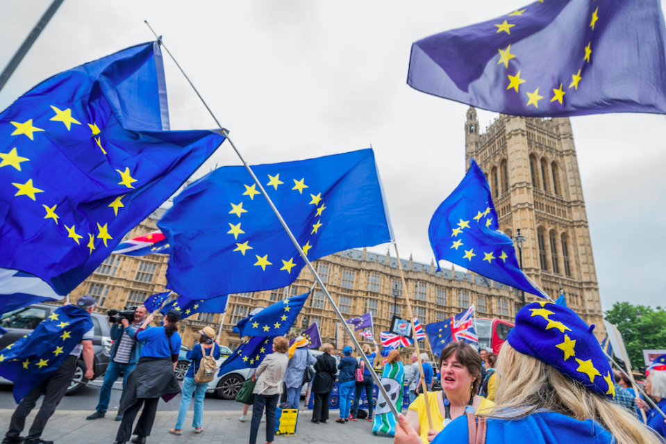 <em>The BMA is now calling for a second referendum on the terms of the Brexit deal (Rex)</em>