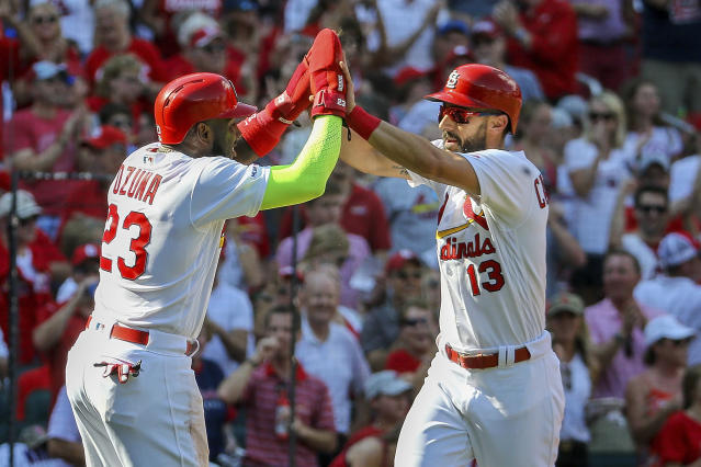 St. Louis Cardinals clinch the NL Central. (AP Photo/Scott Kane)