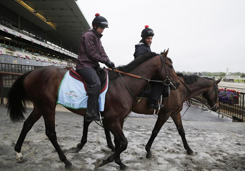 Orb, left, is walked through the paddock runway at Belmont Park for a morning workout, Friday, June 7, 2013 in Elmont, N.Y. Orb is entered in Saturday's Belmont Stakes horse race. Jennifer Patterson is the exercise rider. (AP Photo/Mark Lennihan)