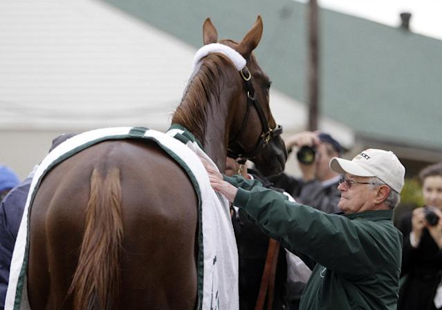 Trainer Art Sherman looks at Kentucky Derby entrant California Chrome after a morning workout at Churchill Downs Thursday, May 1, 2014, in Louisville, Ky. (AP Photo/Garry Jones)