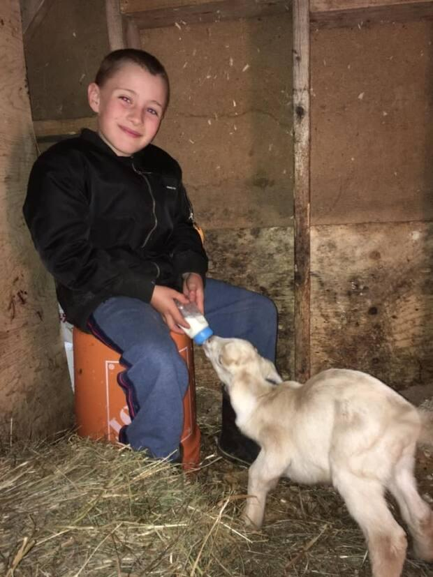 Cian Costelo helping feed a goat.