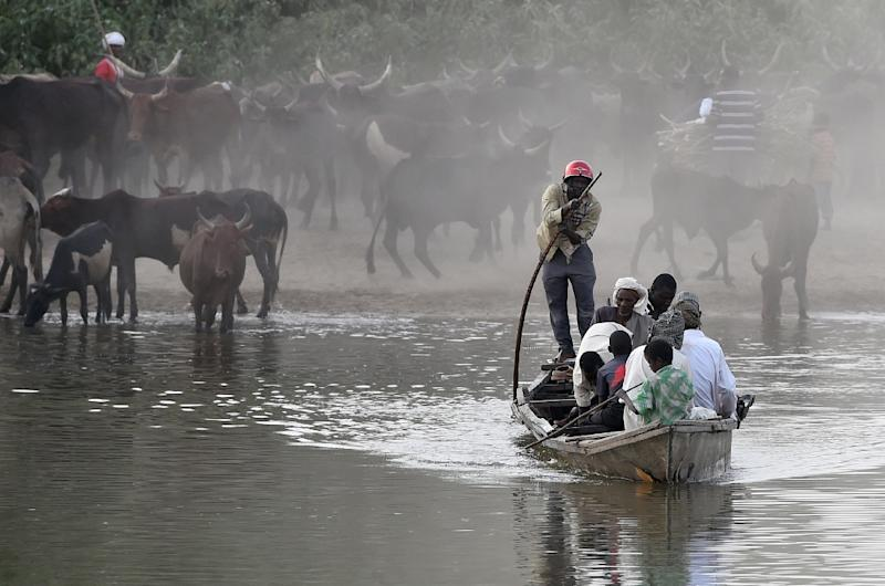 People use a boat to cross Lake Chad, where hundreds of islets separated by channels hidden by tall grass provides cover for Boko Haram to steal livestock and crops from locals (AFP Photo/Philippe Desmazes)