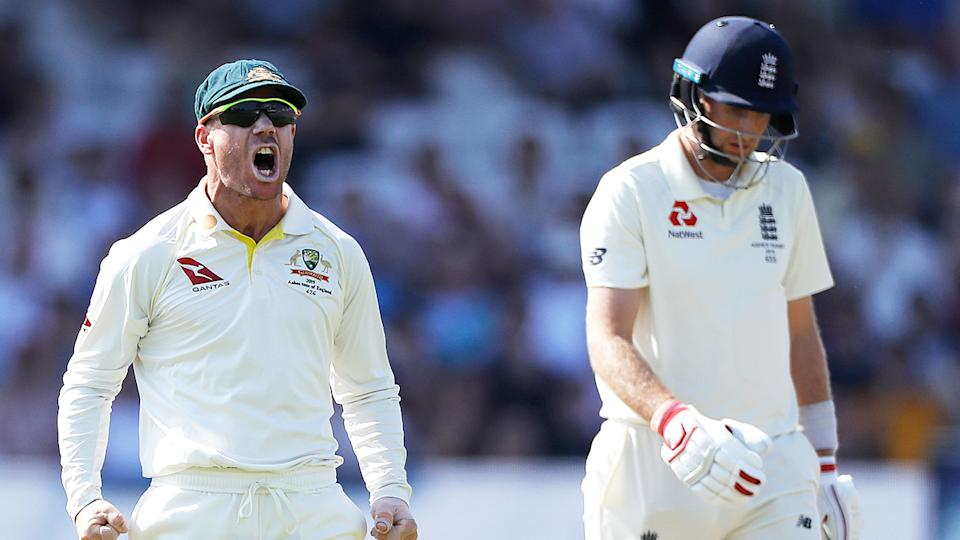 David Warner (pictured left) celebrates a wicket in front of England captain Joe Root (pictured right) during the Ashes.