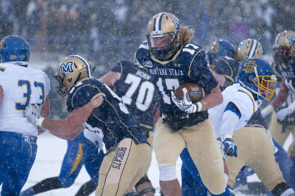 In this photo provided by Montana State University, Montana St running back Chad Newell (17) scores a touchdown early in the first quarter of an NCAA Football Championship Subdivision playoff game against South Dakota St Saturday, Nov. 29, 2014 in Bozeman, Mont. (AP photo/Kelly Gorham)