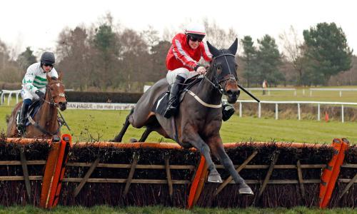 Talking Horses: why did stewards take no interest in Little Rory Mac?