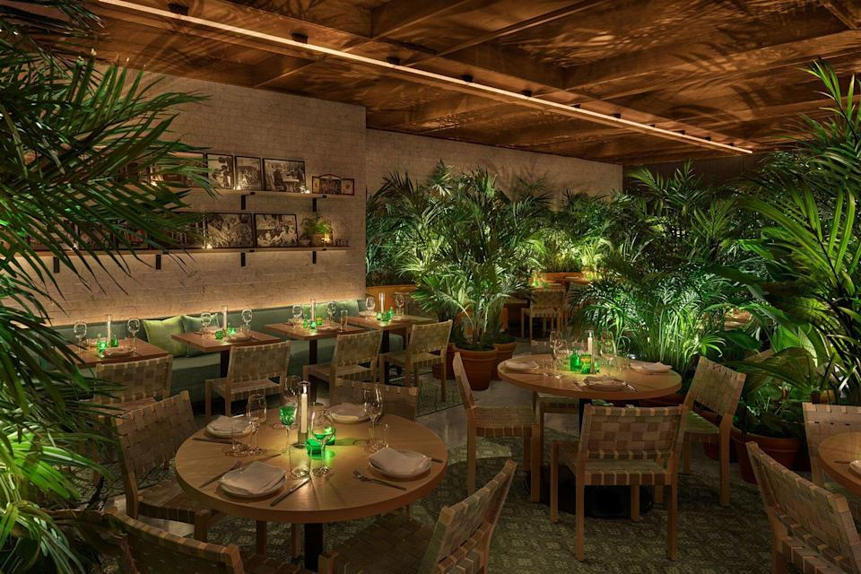 Popular restaurant with green plants and dim lights