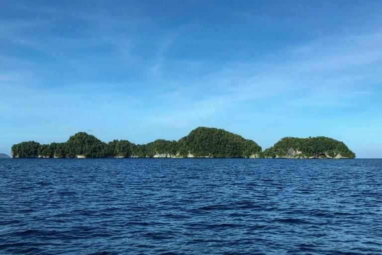 The Pacific island nation of Palau -- one of the last coronavirus-free countries on earth -- is set to choose a new president on Tuesday