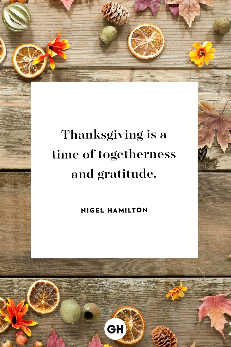 <p>Thanksgiving is a time of togetherness and gratitude.</p>