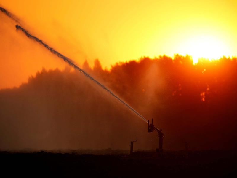 A field is irrigated during a heatwave in France last month. Heatwaves are lasting longer and happening more frequently around the world: REUTERS/Pascal Rossignol