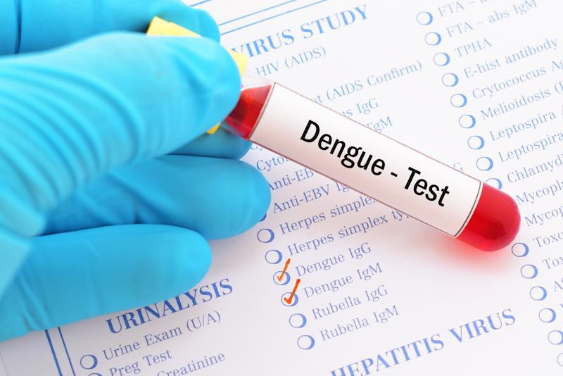 Blood sample with requisition form for dengue virus test