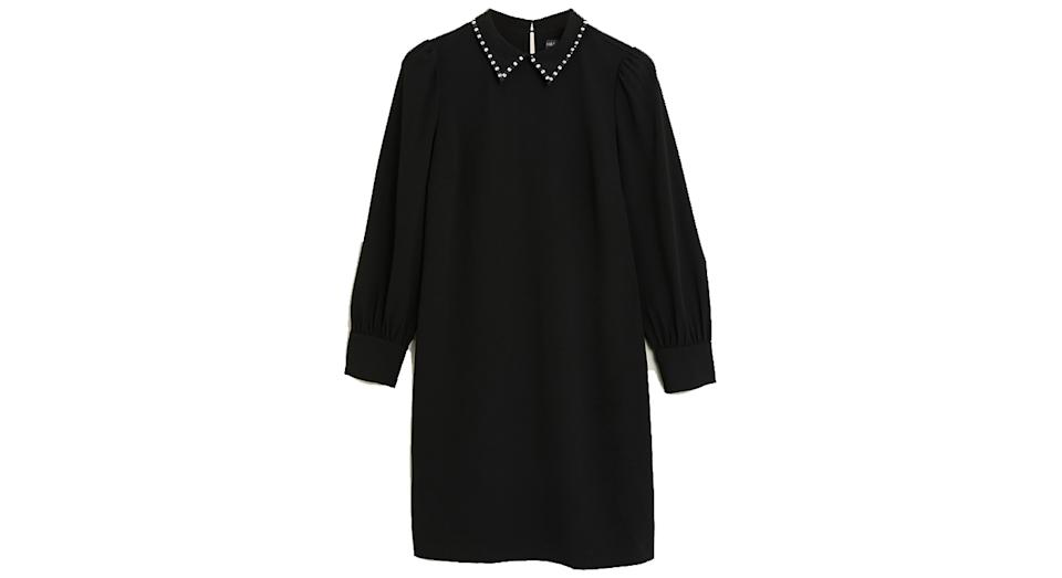 Collared Knee Length Shift Dress