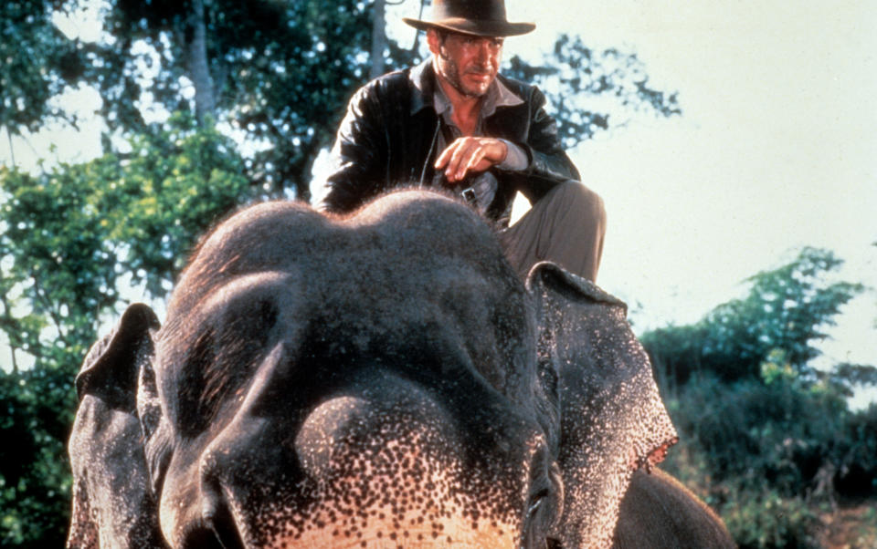 Harrison Ford rides an elephant in a scene from the film 'Indiana Jones And The Temple Of Doom', 1984. (Photo by Paramount/Getty Images)