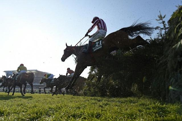 The Grand National is one of the biggest events in the horse racing calendar (AFP Photo/PAUL ELLIS )