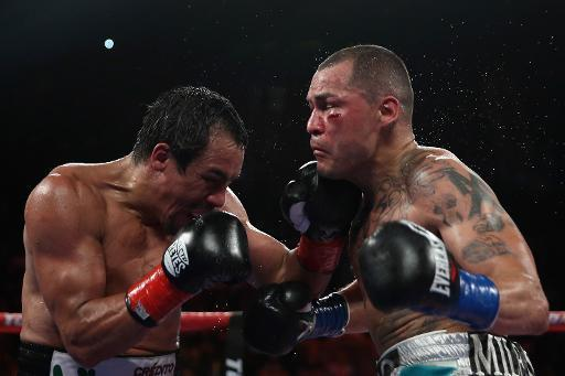 Juan Manuel Marquez (L) lands a left hook to the chin of Mike Alvarado at The Forum on May 17, 2014 in Inglewood, California