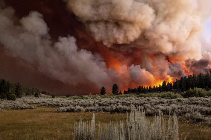 Plumes of smoke and fire rise above Frenchman Lake as the Sugar Fire, part of the Beckwourth Complex Fire, burns in Plumas National Forest, Calif., on Thursday, July 8, 2021. (AP Photo/Noah Berger)
