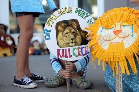 Piper Hoppe, 10, from Minnetonka, Minnesota, holds a sign at the doorway of River Bluff Dental clinic to protest against the killing of a famous lion in Zimbabwe, in Bloomington, Minnesota, July 29, 2015. REUTERS/Eric Miller/File Photo