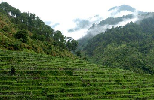 General view of rice terraces in Bontoc, the Cordillera mountain region in the northern Phliippines