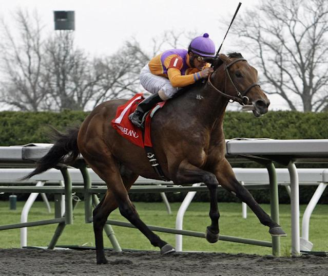 Robby Albarado rides Medal Count to victory in the Transylvania Stakes horse race at Keeneland in Lexington, Ky., Friday, April 4, 2014. (AP Photo/Garry Jones)