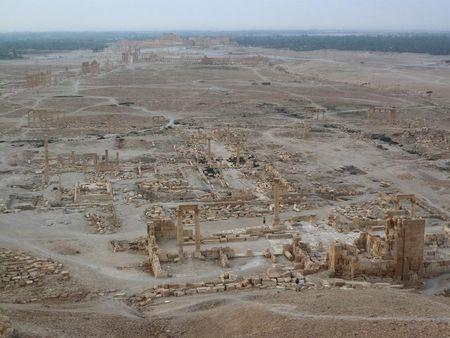 A general view shows the historical city of Palmyra, Syria, August 5, 2010. REUTERS/Sandra Auger