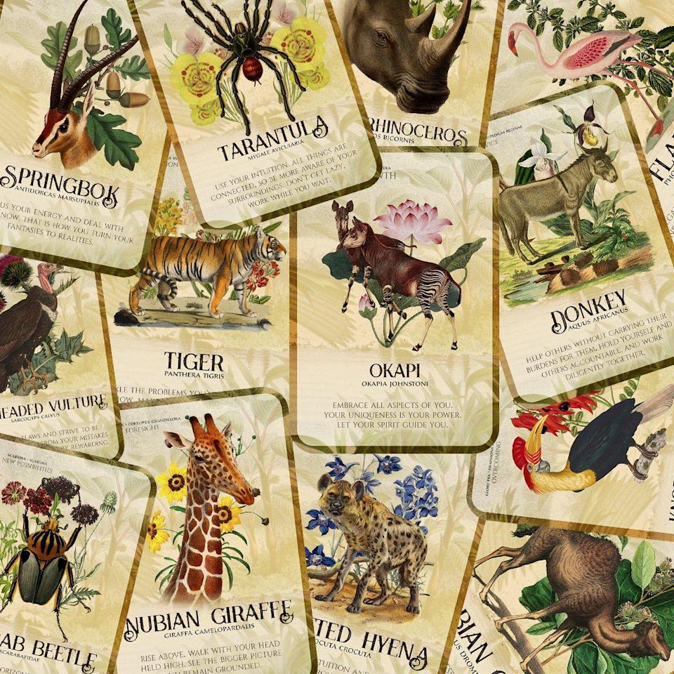 """<p>jessijumanji.com</p><p><strong>$66.00</strong></p><p><a href=""""https://jessijumanji.com/products/flora-and-fauna-of-africa-oracle-deck-pre-order"""" rel=""""nofollow noopener"""" target=""""_blank"""" data-ylk=""""slk:Shop Now"""" class=""""link rapid-noclick-resp"""">Shop Now</a></p><p>Jessi Jumanji drew from African plant and animal life when creating this deck; each card features a plant or animal along with a message, such as an okapi with the message, """"Embrace all aspects of you. Your uniqueness is your power. Let your spirit guide you."""" </p>"""