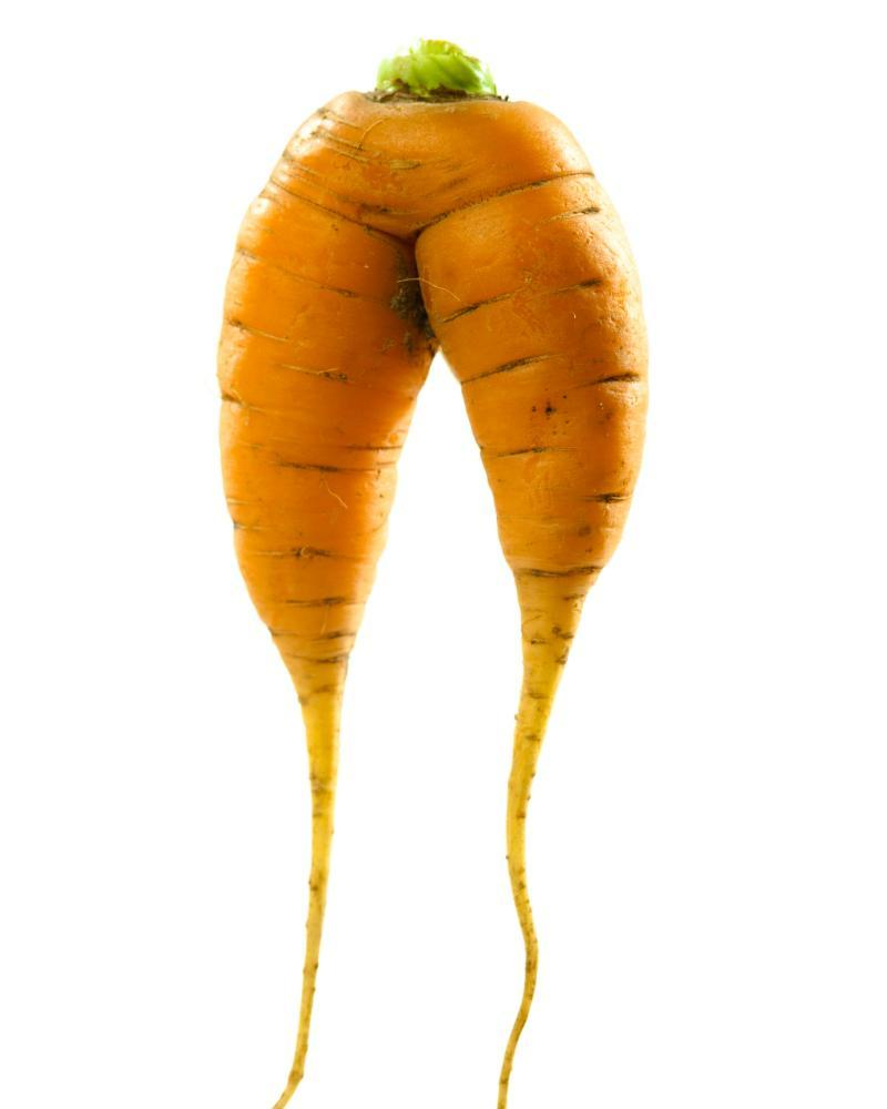 Misshapen Carrot isolated on white background