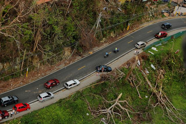 <p>An aerial view shows trees and a road damaged by Hurricane Maria in Puerto Rico, Oct. 5, 2017. (Photo: Lucas Jackson/Reuters) </p>