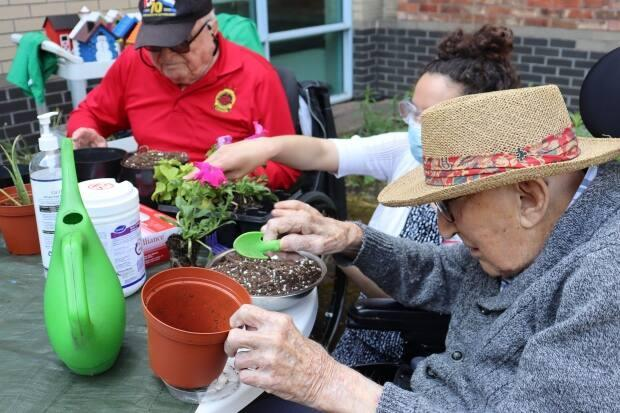 Horticulture therapist Sarah Shapiro (centre) helps Alex Kowbel (left) and Frank Smith (right) pot some annuals as part of the horticultural therapy program at the Perley and Rideau Veteran's Health Centre. (Hallie Cotnam/CBC - image credit)
