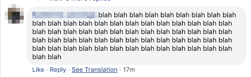 Each of the initial comments were just the word 'blah' repeated over and over. Photo: Facebook