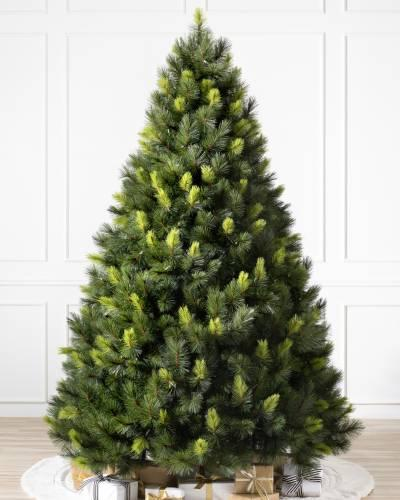 """<p><strong></strong></p><p>balsamhill.com</p><p><strong>$699.00</strong></p><p><a href=""""https://www.balsamhill.com/p/scotch-pine-artificial-christmas-tree"""" target=""""_blank"""">Shop Now</a></p><p>Minimal shedding and high water retention make the Scotch pine a low-maintenance choice.</p>"""