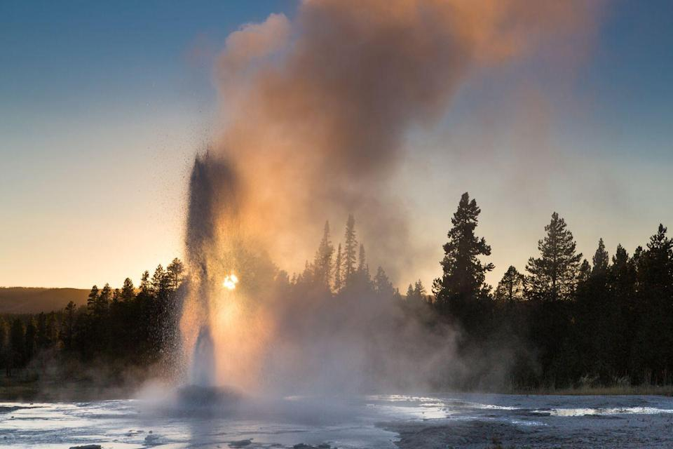 <p>The Pink Cone Geyser erupts in front of the setting sun at Yellowstone National Park, Wyoming // January 01, 2014</p>