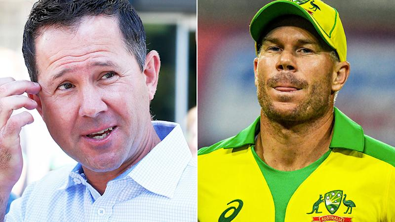Pictured here, former Aussie captain Ricky Ponting and opening batsman David Warner.