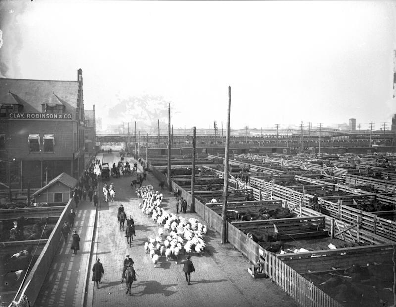 View of livestock pens and workers herding sheep at the Union Stock Yard, Chicago, IL, ca.1910. (Photo: Chicago History Museum/Getty Images)
