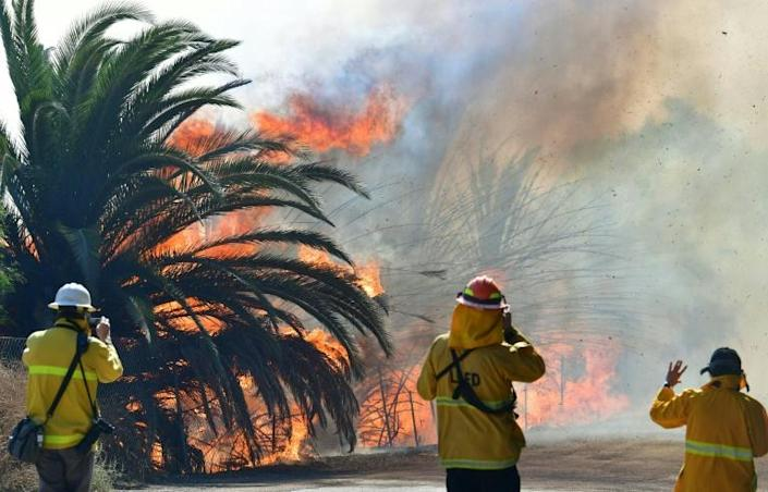 California state firefighting resources have become increasingly overwhelmed (AFP Photo/Frederic J. BROWN)