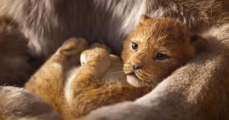 Is The Lion King a shot-for-shot remake?