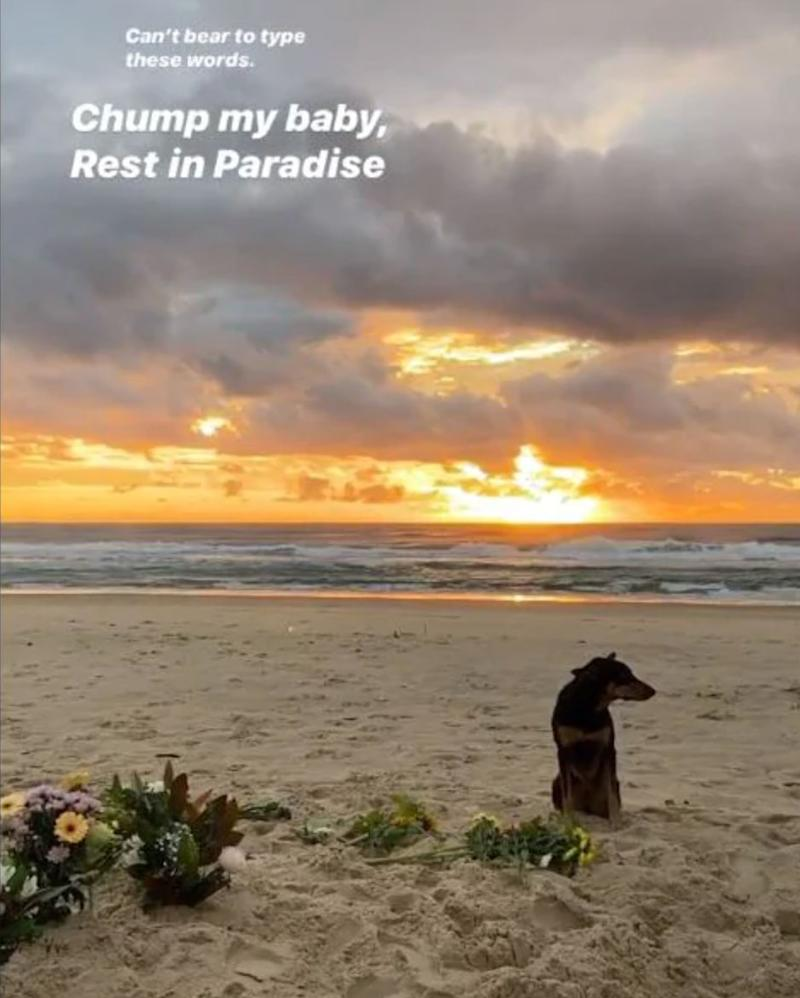 Seen here is a screenshot of Ellidy Vlug's Instagram tribute to her late boyfriend, Alex Pullin.
